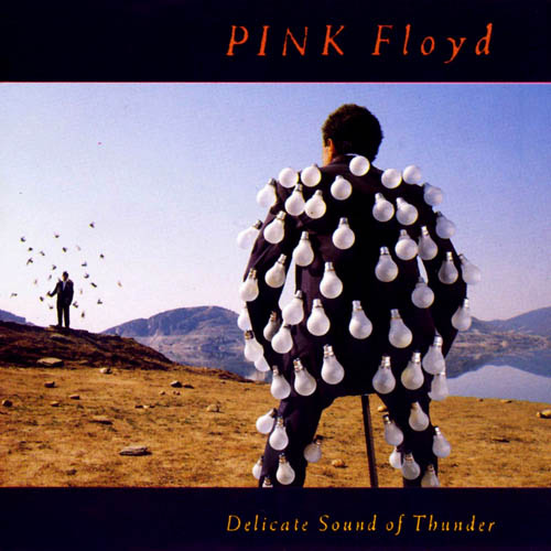 pink_floyd_delicate_sound_of_thunder